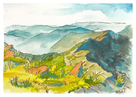 Landscape 2